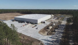 NUPI AMERICAS PLANT IN EARLY BRANCH GROWS